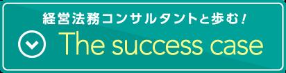 successcase